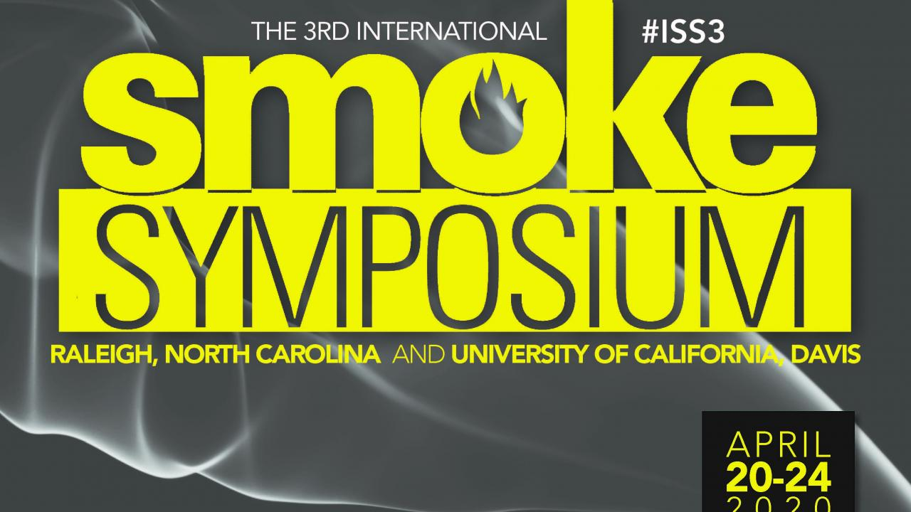 "Image: title ""smoke symposium"" in yellow lettering against a gray background."